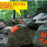 CALENDARIO CAMPEGGIO DALL'11 AL 22 LUGLIO