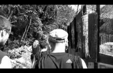 VIDEO del campeggio degli studenti medi