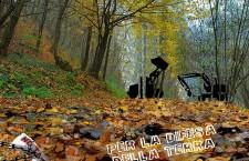 Giovedì 31 ottobre la notte delle Fomne no tav in Clarea