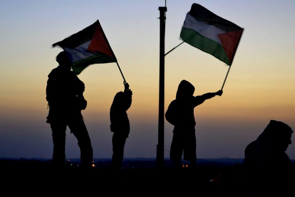 Bambini sventolano le bandiere Palestinesi nel villaggio di Susya  a sud delle colline di Hebron. Susya è uno dei tanti villaggi visitati dagli attivisti italiani ( Foto Movimento NO TAV  ).