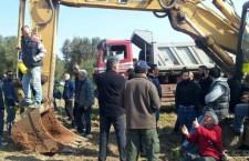 Attivisti bloccano l'eradicazione degli ulivi in Salento