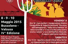 8/10 maggio 2015 a Bussoleno: Critical Wine No Tav