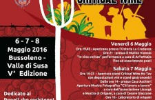 Critical Wine No Tav 6/7/8 maggio 2016 Bussoleno