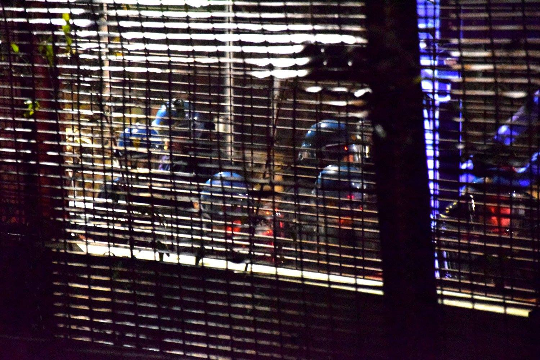 Capodanno No Tav: idrante in Clarea e lacrimogeni al carcere