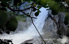 Mulini della Clarea. Paradiso a rischio
