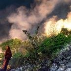 """Case salve ma alberi bruciati. """"Così muoiono i nostri paesi"""""""