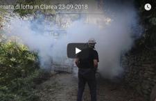 Tagli con il flex e lacrimogeni in Clarea
