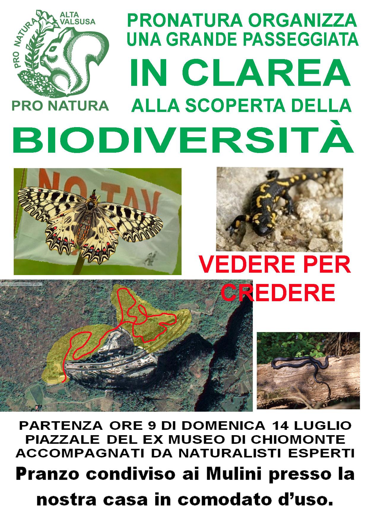 14/07, passeggiata in Clarea alla scoperta della biodiversità