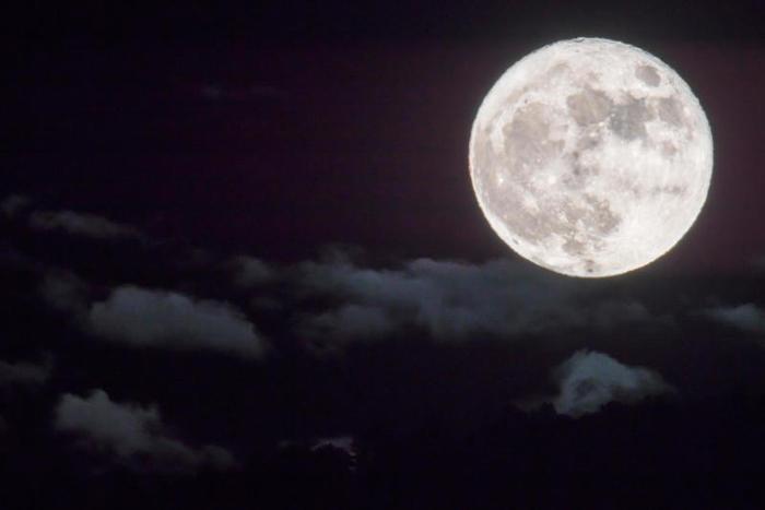 Nicoletta, anche la luna in cielo è una falce affilata