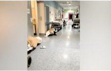 A Rivoli, terra di tav, ospedale al collasso e pazienti a terra per l'emergenza covid