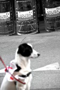 Vietato l'ingresso ai cagnolini che portano al guinzaglio un No Tav