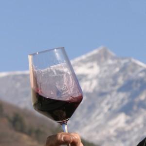 Il vino della valle ribelle