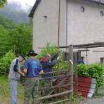 steccato 4