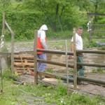 steccato 5